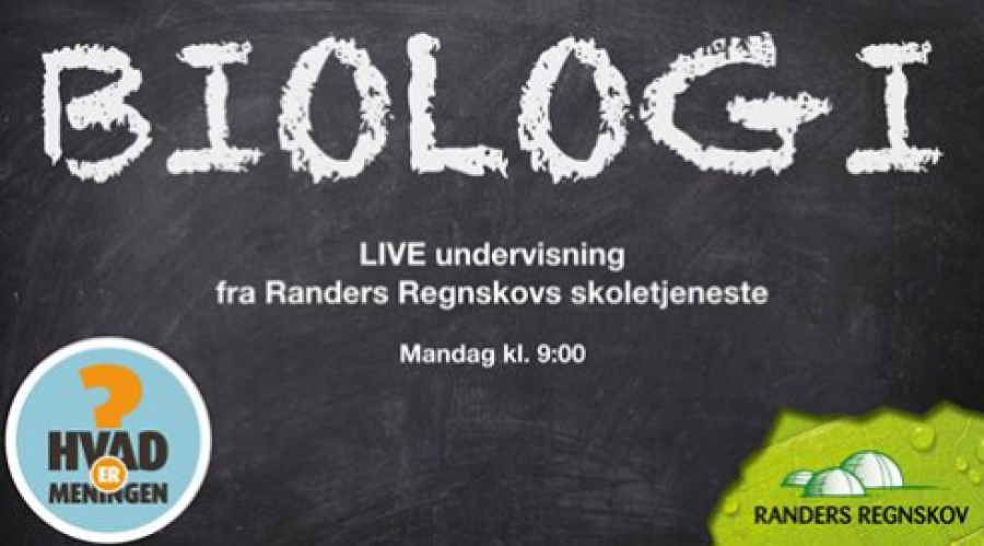 Live undervisning fra Randers Regnskov