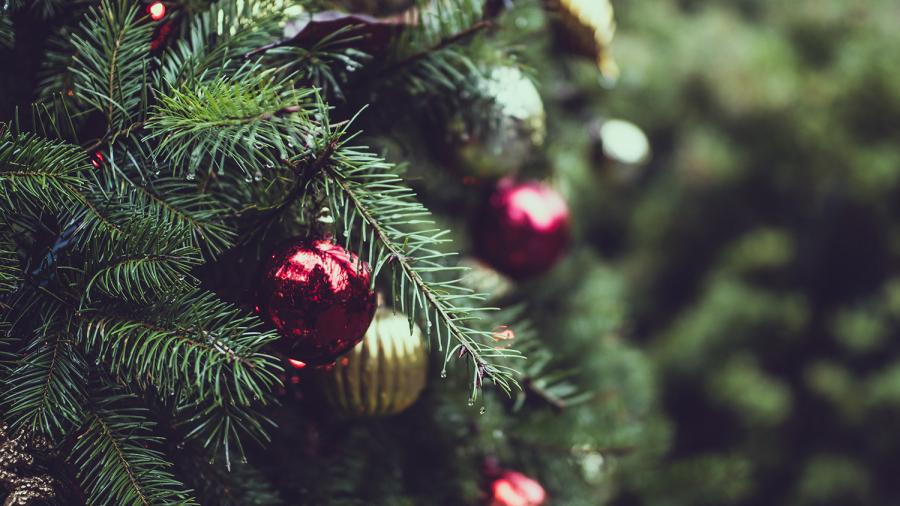 Grantræ med julekugler